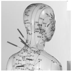 acupunctuur en meridianen