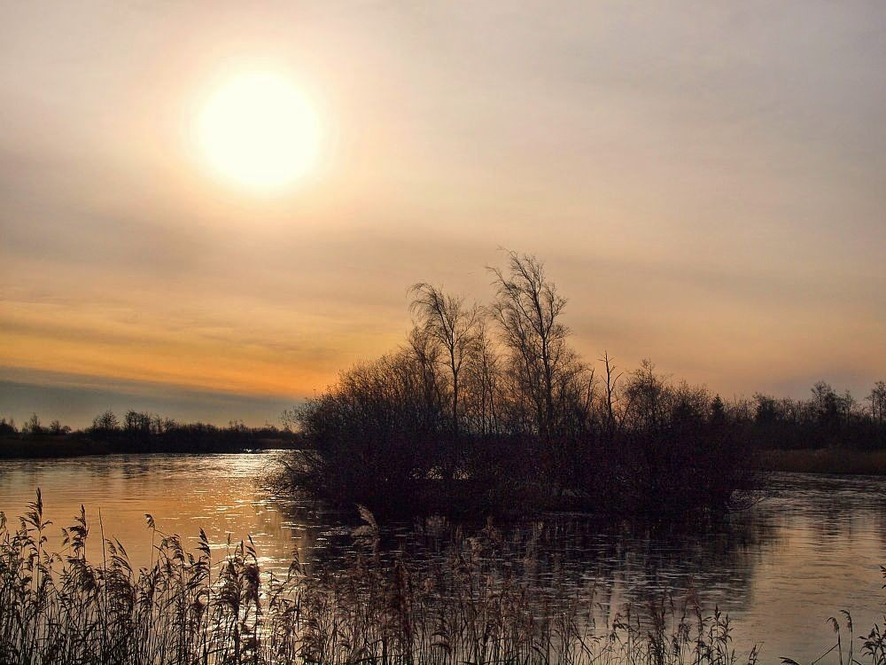 Wildes Nordfriesland