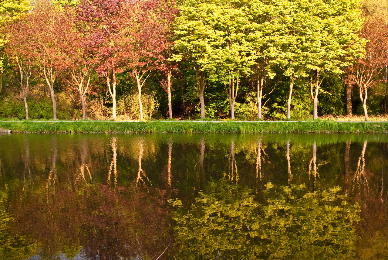 La Marlet aux couleurs d'automne