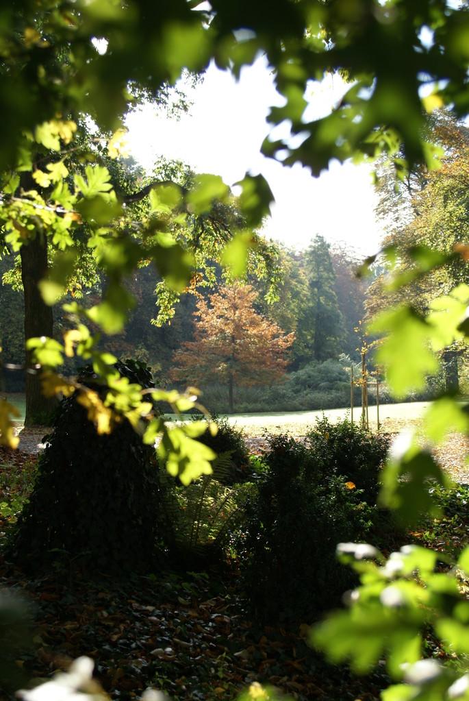 parc Serna