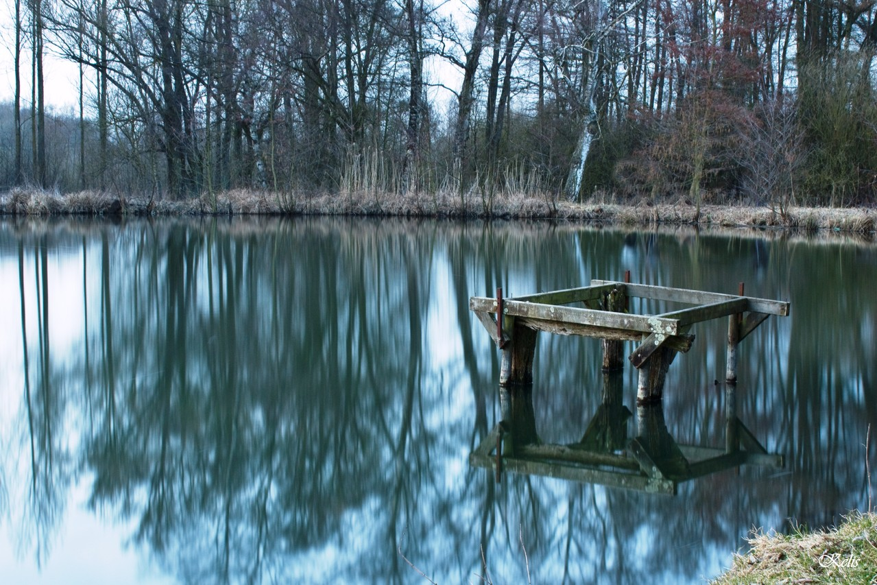 L'étang de Launoy