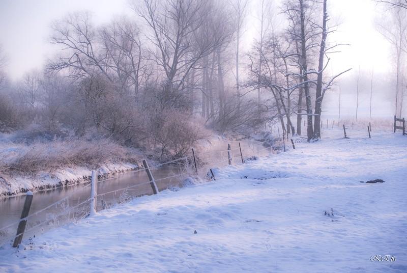 l'hiver à Ronquiere