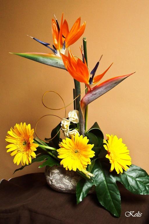 art floral, composition florale avec strelitzia-oiseau de paradis