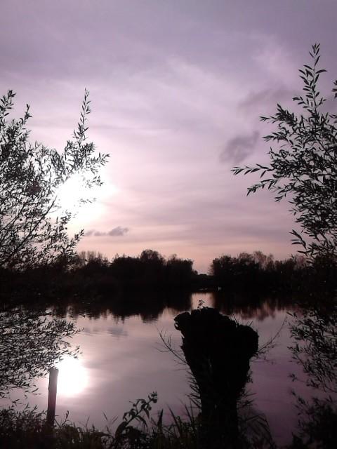 le romelaëre marais audomarois réserve naturelle Christelle Lefait