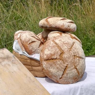 Nutzung Lehmofen - Brotbacken im Holzofen- Salzburg Oberösterreich