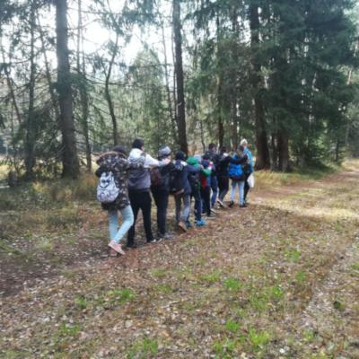 Walderlebnis in der Neuen Mittelschule Bürmoos