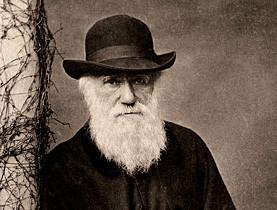 チャールズ・ダーウィンの立派な髭