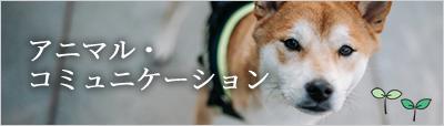 アニマル・コミュニケーション