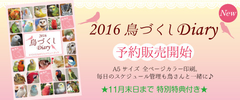 2016年鳥づくしシステム手帳(ダイアリー)