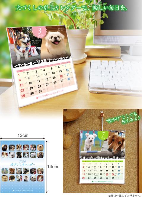 2020年 犬卓上カレンダー 犬 カレンダー