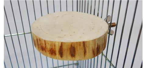 オリジナル 天然木 止まり木(テーブル型)円型