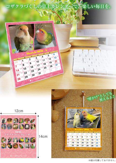 2021年 コザクラインコ卓上カレンダー小桜インコ カレンダー
