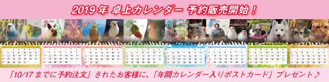 2019年 卓上カレンダー予約販売
