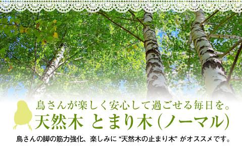 オリジナル 天然木 止まり木(ノーマル)