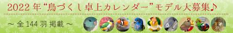 2022年 鳥 インコ 卓上 カレンダー