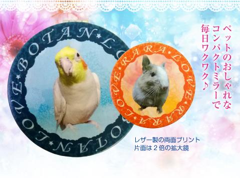 オーダーメイド愛鳥コンパクトミラー