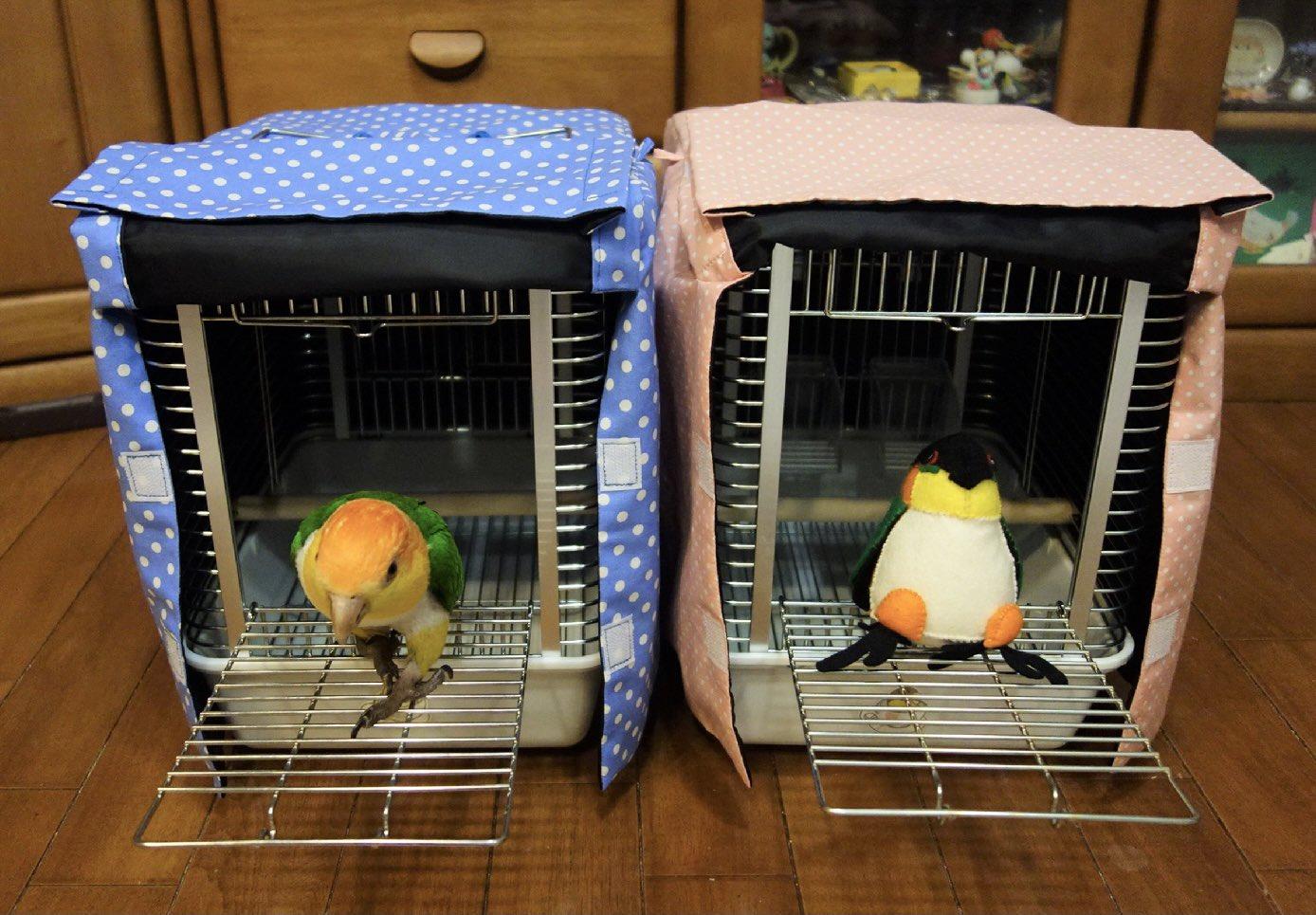 通院時、バッグは1羽の時は良いけど2羽だと出し入れがキツいし、これだとそのまま鳥が出ることができる。