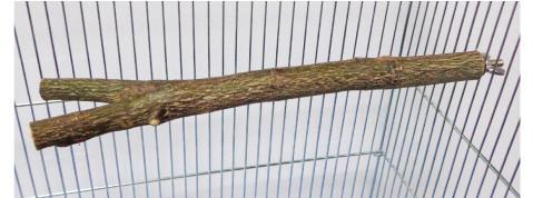 オリジナル 天然木 止まり木(ノーマル)L