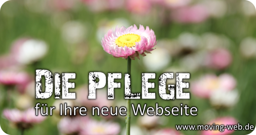 Eigene Internetseite selber pflegen oder von der Webagentur pflegen lassen. Als lokaler Partner aus Wachtberg stehen wir Ihnen zur Verfügung.