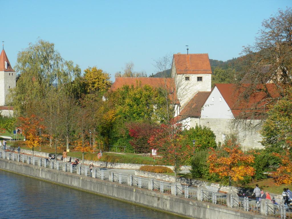Gredinger Tor verwachsen mit Büschen und Bäumen (Oktober 2010)