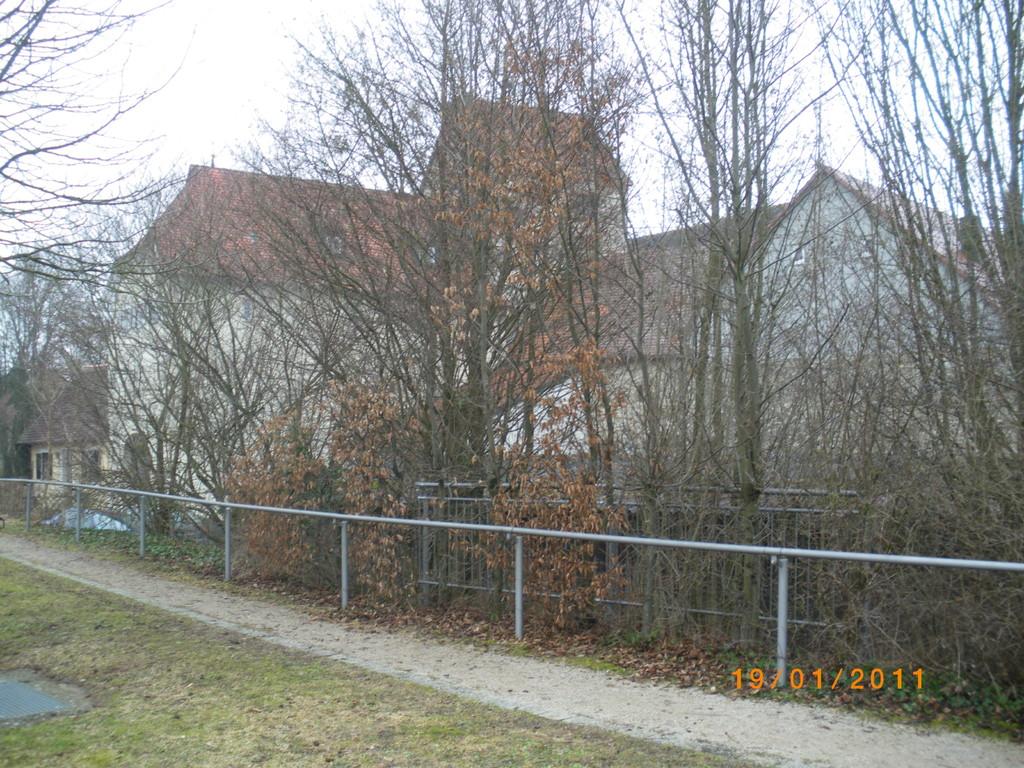 Stadtansicht durch Büsche und Bäume verdeckt ( Februar 2011)