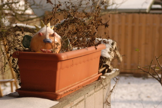 Gartenkönig, kein Raku, gebrannt bei ca 950° C, wird hier auf seine Frostfestigkeit geprüft