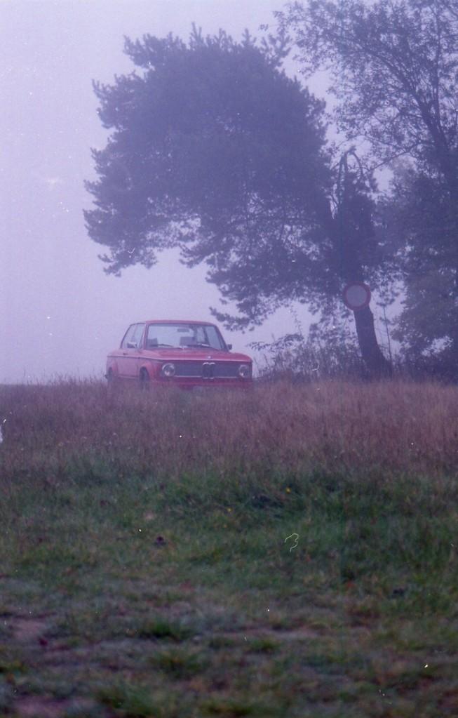 Der Rote im Nebel