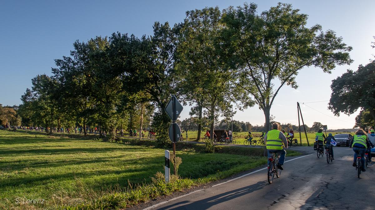 Durchfahrt durch das Hankhauser Moor