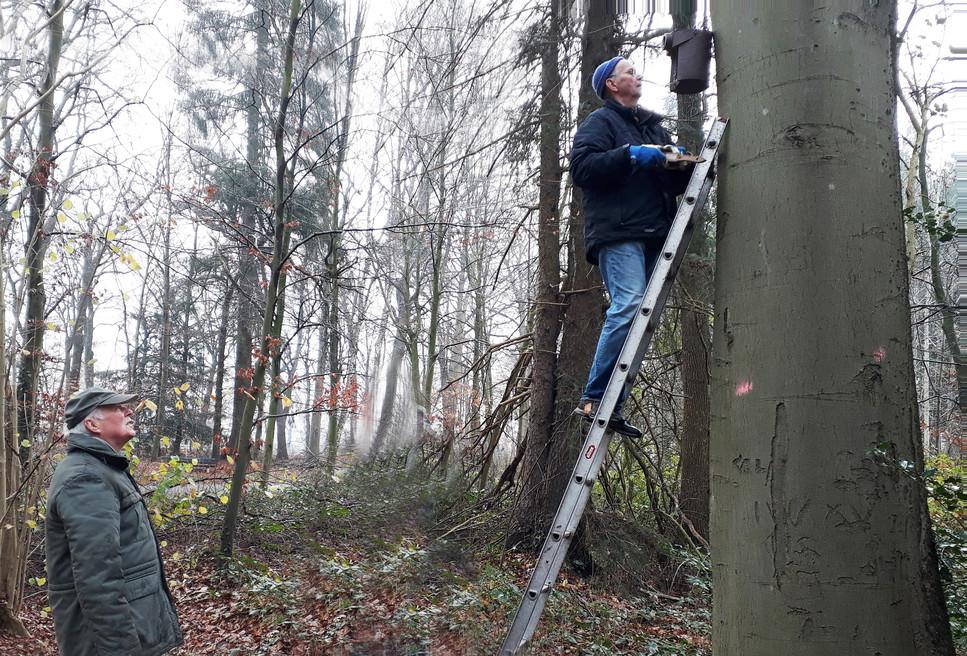 5.12.2020: H. Vollstaedt auf der Leiter