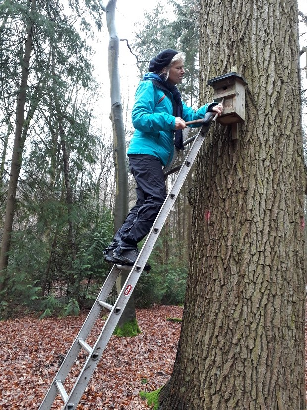 Auch Eike hat Mut auf der Leiter bewiesen...