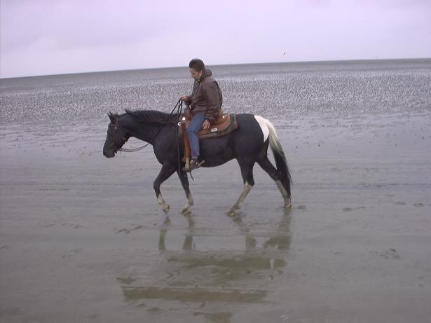 Wattritt mit Sabine 2005