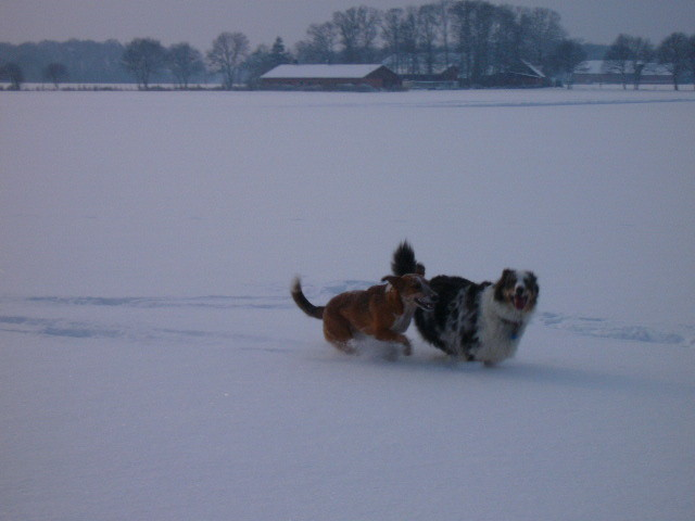 Schnee macht Spaß
