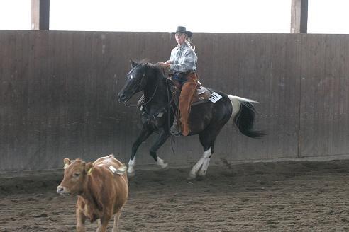 Ranchcutting Wenden 2008