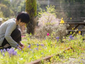 林久美 京北アロマサロン お庭での植物との触れ合いは、至福の時間です。