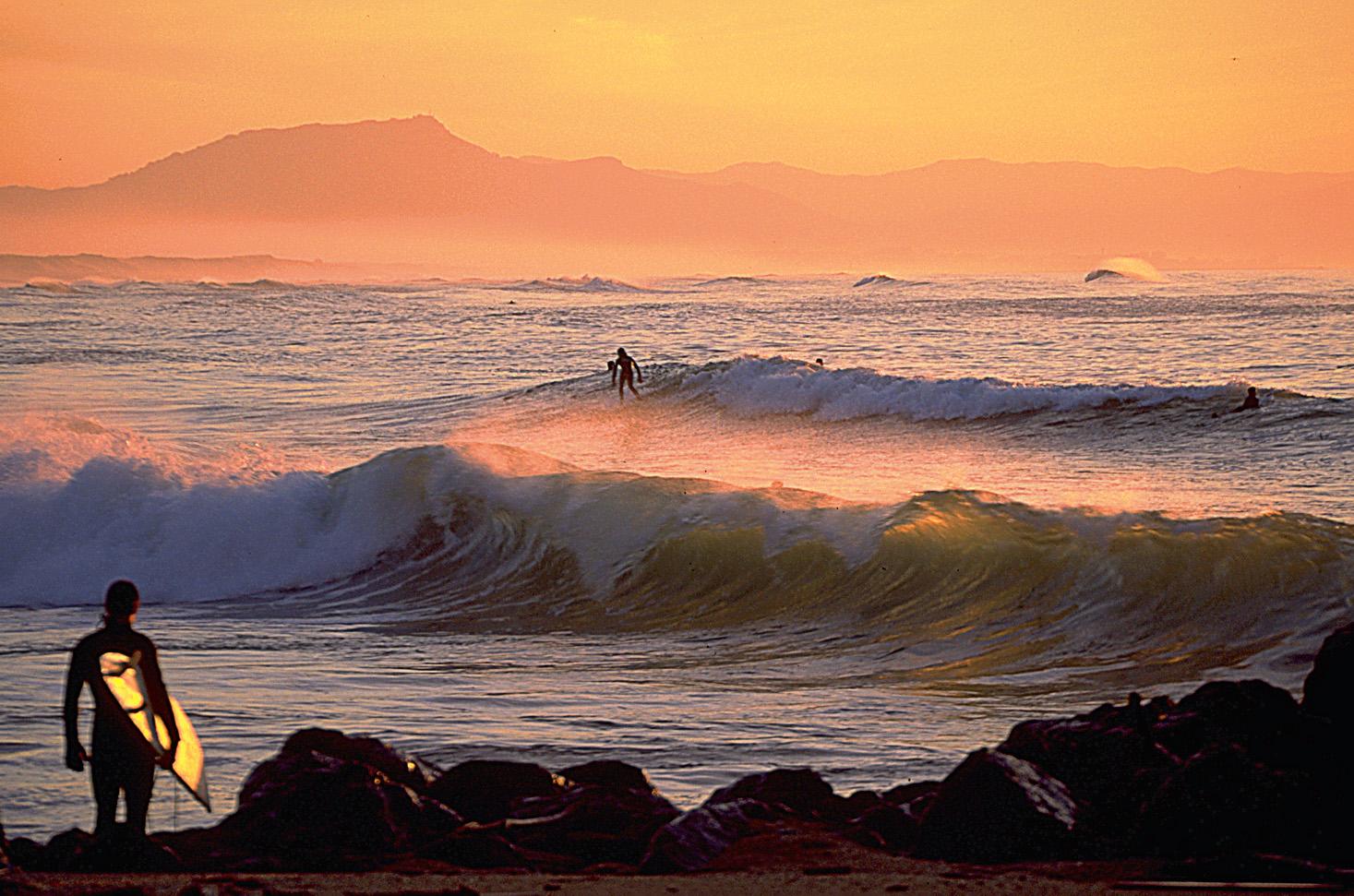 Baignade et surf dans l'océan Atlantique - Crédit : CDT des Landes/Plantey