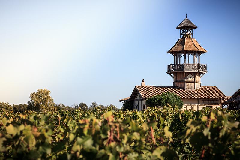 Château Smith-Haut-Laffite à Martillac, dans les Graves - Crédit : David Remazeilles (Gironde Tourisme)