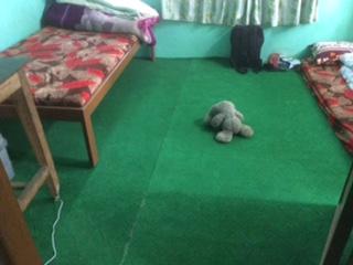 neue Teppiche - dringende Neuanschaffung im Haus