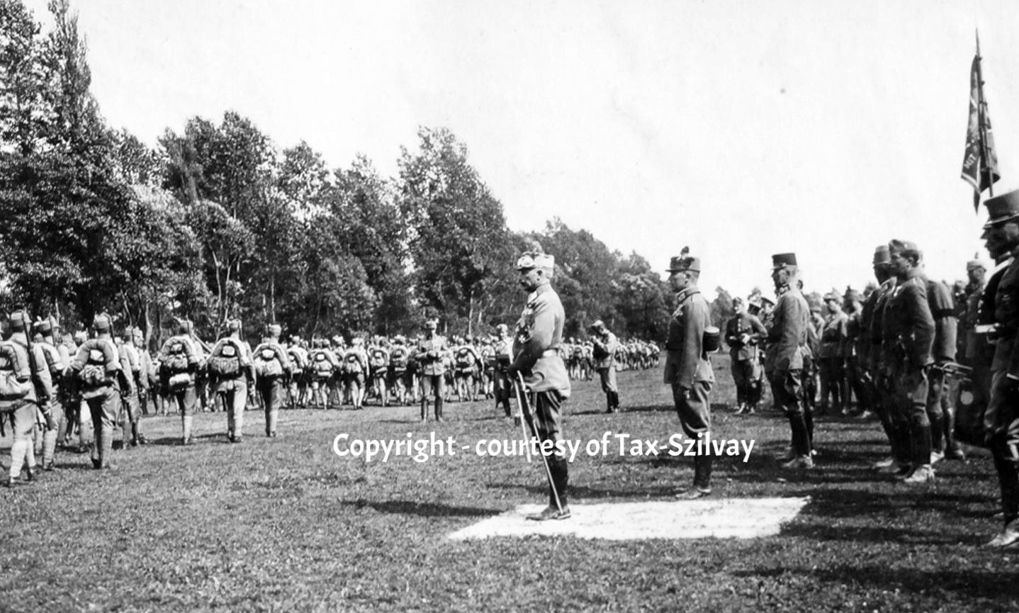 05. März 1916 Besichtigung Armeekdt Erzherzog Friedrich bei Goloby, Vorbeimarsch JB 17