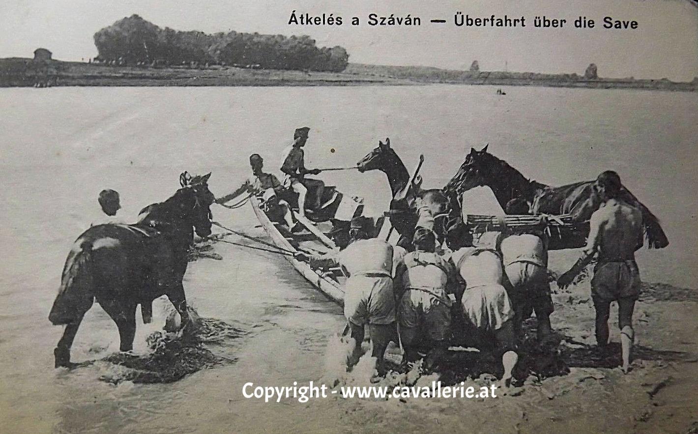 Schwimmausbildung für Pferde, Übersetzen der Save