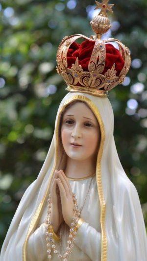 Milagrosa Imagen Peregrina de N.S. de Fátima