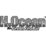 H2Ocean Tattoopflege Tattoo Foam Ocean Foam