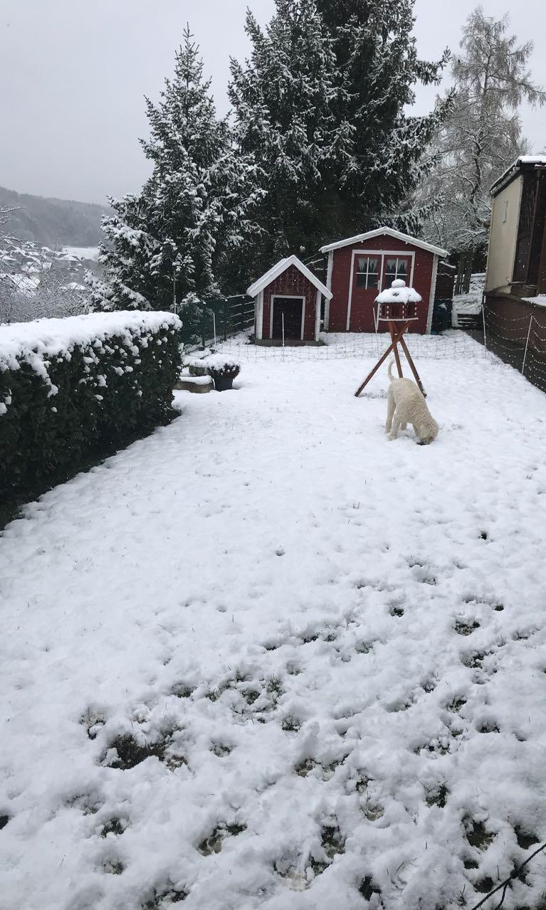 Uiiii - hier liegt ja Schnee