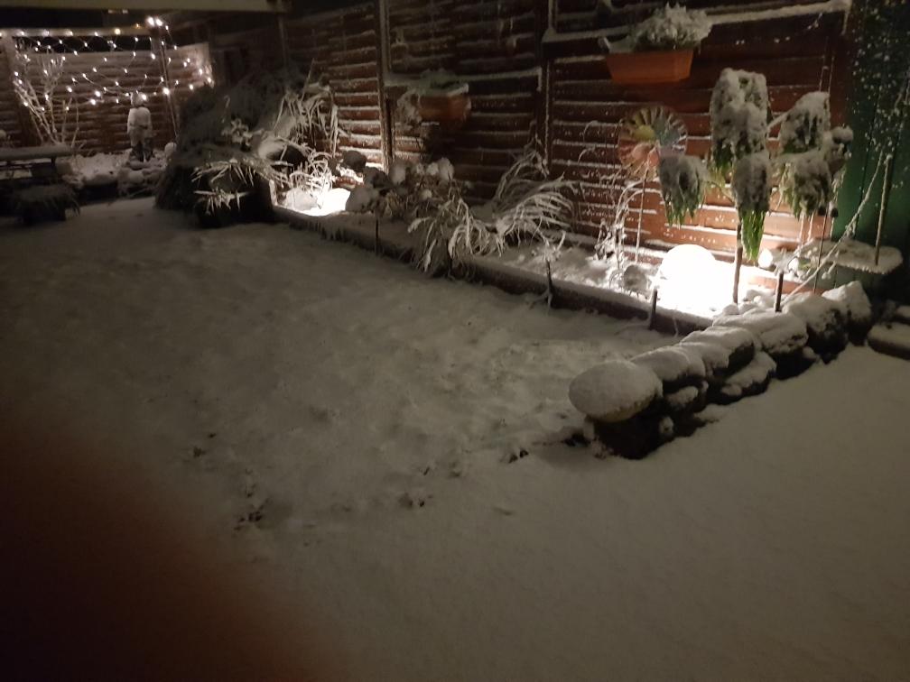 Wir holen dich bald - dann kannst du hier im Schnee mit deinen Mädels toben.