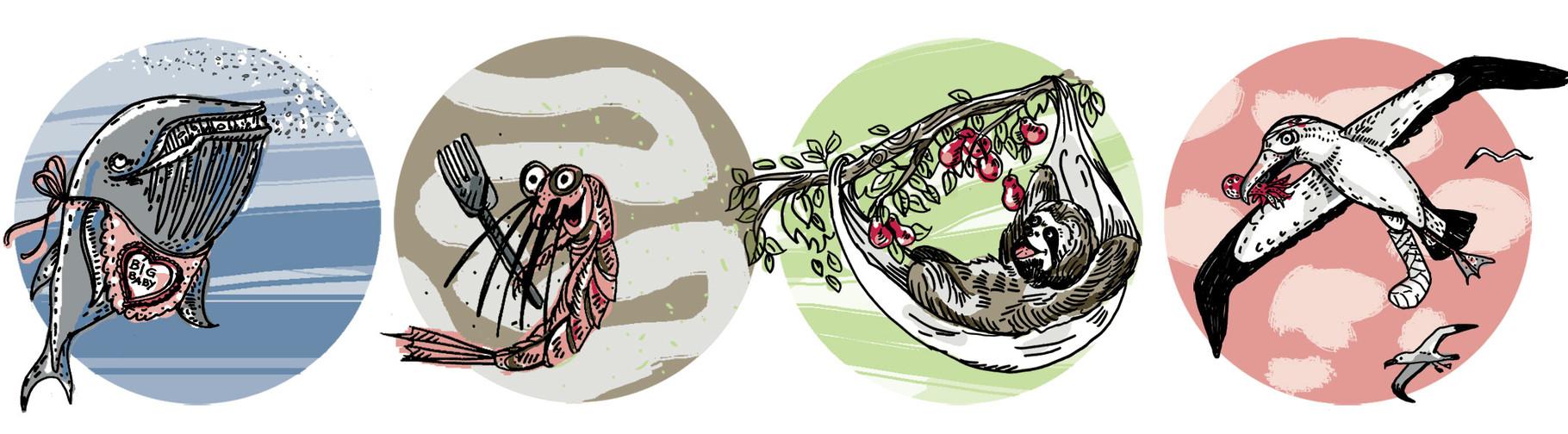 Erfindungen der Tierwelt, Illustration Leitartikel energy forum
