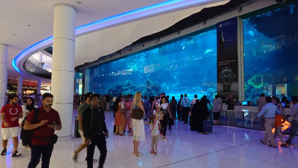 und Aquarium