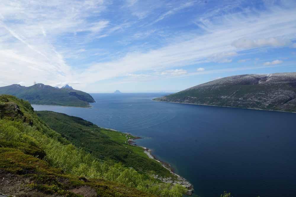 Sjonafjord