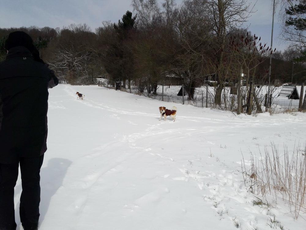 nochmal Schnee Mitte März ..