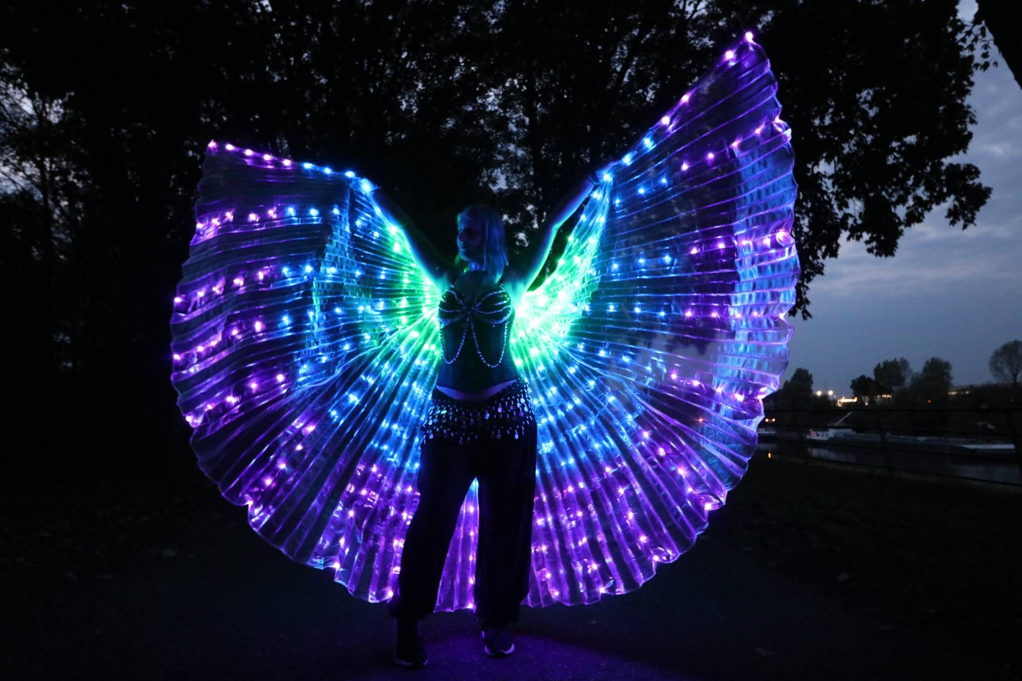 LED Isiswings