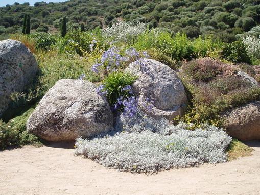 Massif de rocaille