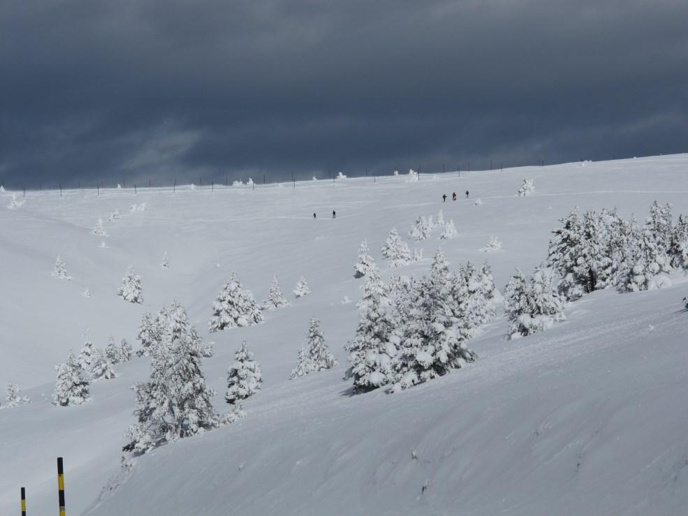 loucardaline-bedoin-ventoux-chambre d hotes-neige-rando raquettes-ski-luge-vaucluse
